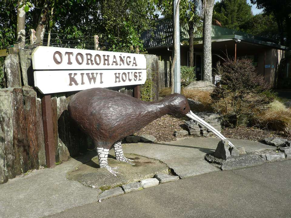 "Auckland ""City Of Sails"""