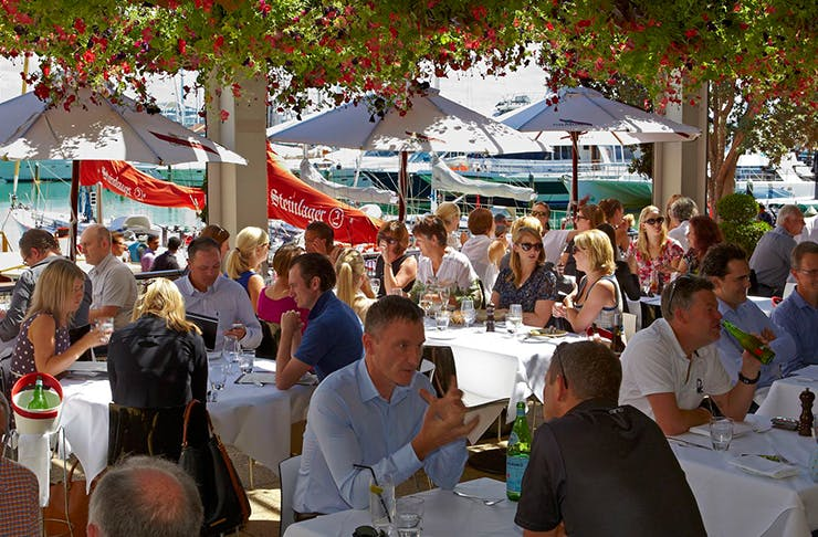 Auckland Customized Sightseeing Tours Wining & Dining